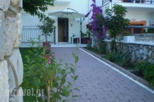 Evgenia Apartments_best prices_in_Apartment_Sporades Islands_Skiathos_Skiathos Chora
