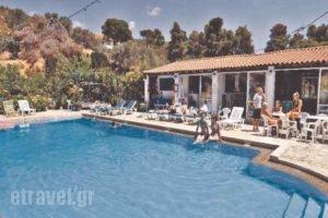 Filia Studios_accommodation_in_Apartment_Sporades Islands_Skiathos_Troulos