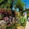 Camelia Studios_best deals_Apartment_Sporades Islands_Skiathos_Skiathos Chora