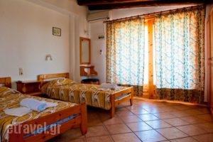 Camelia Studios_holidays_in_Apartment_Sporades Islands_Skiathos_Skiathos Chora
