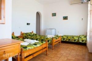 Camelia Studios_lowest prices_in_Apartment_Sporades Islands_Skiathos_Skiathos Chora