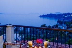 Villa Kavourakia_accommodation_in_Villa_Sporades Islands_Skiathos_Skiathoshora