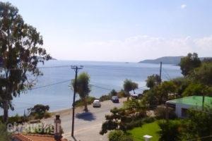 Azalea Studios_accommodation_in_Apartment_Sporades Islands_Skiathos_Skiathos Chora
