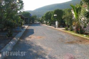Simos Camping_travel_packages_in_Peloponesse_Lakonia_Elafonisos
