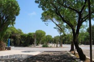 Simos Camping_holidays_in_Room_Peloponesse_Lakonia_Elafonisos
