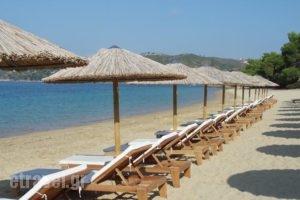 Skiathoslidays_accommodation_in_Hotel_Sporades Islands_Skiathos_Skiathoshora