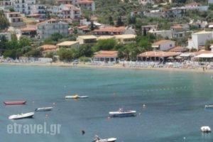 Hellen Studios_holidays_in_Hotel_Sporades Islands_Skiathos_Skiathoshora