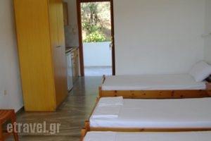 Diamantis Studios_lowest prices_in_Hotel_Sporades Islands_Skiathos_Skiathos Chora