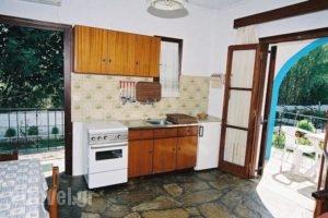 Mylos Studios_travel_packages_in_Sporades Islands_Skiathos_Skiathoshora