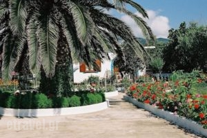 Mylos Studios_best deals_Hotel_Sporades Islands_Skiathos_Skiathoshora