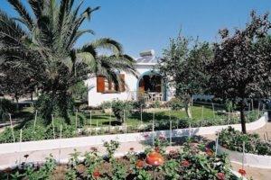 Mylos Studios_lowest prices_in_Hotel_Sporades Islands_Skiathos_Skiathoshora