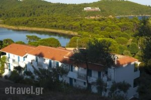 Aelia Studios_accommodation_in_Hotel_Sporades Islands_Skiathos_Skiathoshora