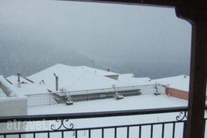 Hotel Leto Delphi_travel_packages_in_Central Greece_Fokida_Delfi