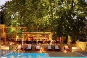 Astoria Hotel_accommodation_in_Hotel_Sporades Islands_Skiathos_Troulos