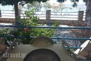 Holiday Tolofona_holidays_in_Hotel_Peloponesse_Achaia_Simpolitia