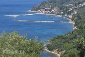 Hotel Selenunda_holidays_in_Hotel_Sporades Islands_Skiathos_Skiathos Chora