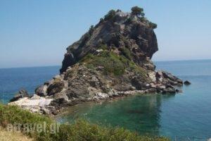 Hotel Selenunda_lowest prices_in_Hotel_Sporades Islands_Skiathos_Skiathos Chora
