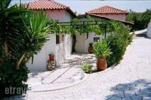Villa Elpiniki_lowest prices_in_Villa_Sporades Islands_Skiathos_Troulos