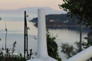 Blue Bay Skiathos_lowest prices_in_Hotel_Sporades Islands_Skiathos_Skiathos Chora