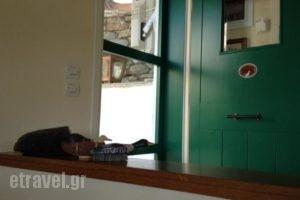 Villa Bouboule_accommodation_in_Villa_Sporades Islands_Skiathos_Troulos