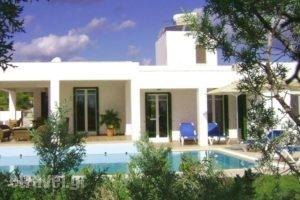 Villa Chevalier_holidays_in_Villa_Dodekanessos Islands_Rhodes_Rhodes Areas