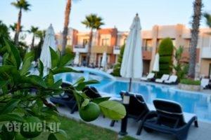 Stavros Melathron Studios_holidays_in_Hotel_Dodekanessos Islands_Rhodes_Kallithea