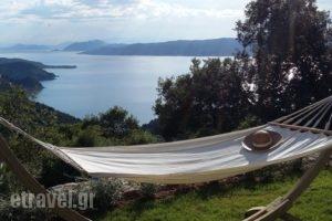 Atrium Villas_accommodation_in_Villa_Sporades Islands_Skiathos_Skiathoshora