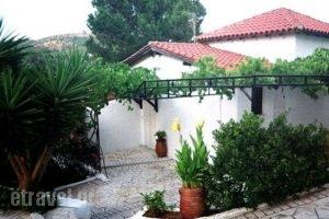 Villa Elpiniki_best prices_in_Villa_Sporades Islands_Skiathos_Troulos