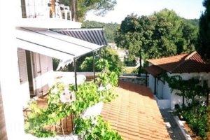 Villa Elpiniki_holidays_in_Villa_Sporades Islands_Skiathos_Troulos