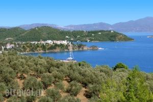 Gea Villas Skiathos_accommodation_in_Villa_Sporades Islands_Skiathos_Skiathos Chora