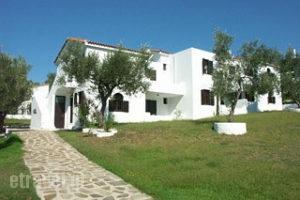 Katerina_accommodation_in_Apartment_Sporades Islands_Skiathos_Troulos