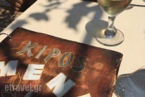 Kipos Taverna Bar_food_in_Restaurant___Platanias