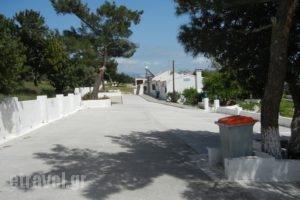 Ioanna_accommodation_in_Room_Aegean Islands_Samos_MarathoKambos