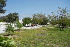 Ioanna_travel_packages_in_Aegean Islands_Samos_MarathoKambos