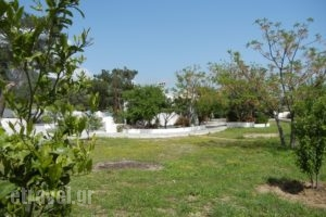 Ioanna_best deals_Room_Aegean Islands_Samos_MarathoKambos