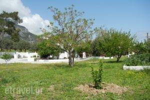 Ioanna_best prices_in_Room_Aegean Islands_Samos_MarathoKambos