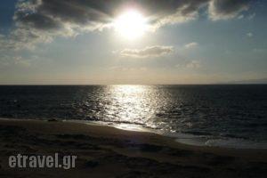 Akti Kastraki Areti Bungalows_best prices_in_Hotel_Cyclades Islands_Naxos_Naxos Chora