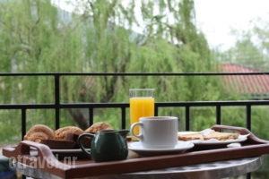 Sakis Pension_best deals_Room_Epirus_Ioannina_Ioannina City