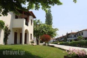 Zefyros_holidays_in_Apartment_Macedonia_Halkidiki_Siviri