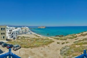 Adriani Studios_travel_packages_in_Cyclades Islands_Naxos_Naxos chora