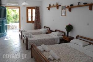 Diogenis Studios_travel_packages_in_Cyclades Islands_Mykonos_Mykonos ora