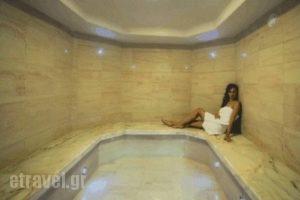 Thessalikon Grand_accommodation_in_Hotel_Thessaly_Karditsa_Mitropoli