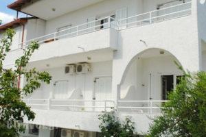 Anastasia_holidays_in_Apartment_Macedonia_Halkidiki_Fourka
