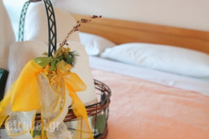Anastasia_travel_packages_in_Macedonia_Halkidiki_Fourka