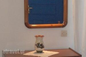 Studio Loukas_lowest prices_in_Hotel_Cyclades Islands_Naxos_Naxos chora