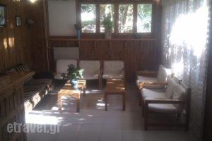 Lemon House_best prices_in_Hotel_Aegean Islands_Samos_Samosst Areas