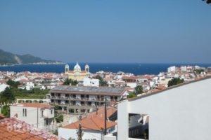 Lemon House_holidays_in_Hotel_Aegean Islands_Samos_Samosst Areas