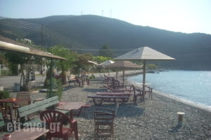 Angelena_holidays_in_Hotel_Central Greece_Fokida_Spilia of Trizonia
