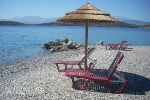Angelena_best prices_in_Hotel_Central Greece_Fokida_Spilia of Trizonia