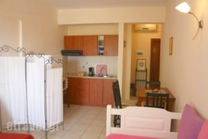 Summer_lowest prices_in_Apartment_Macedonia_Halkidiki_Chalkidiki Area